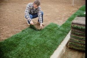 Sod Installation Tips Lay Sod Immediately