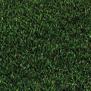 St. Augustine Sod Grass
